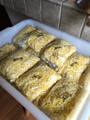 bagged corn